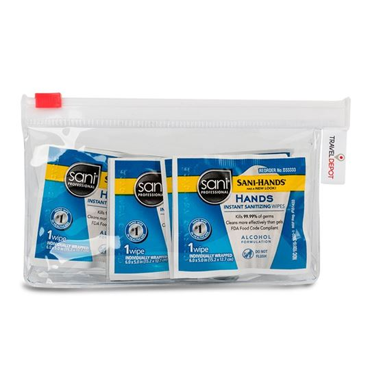 Sani-Hands Professional Hand Sanitizing Wipes, 9 Wipes